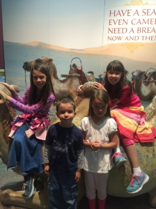 A picture with a camel from the Silk Road exhibit.